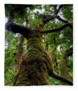 Swan Creek Tree Fleece Blanket