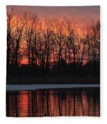 Swan Lake Fleece Blanket