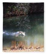 Swan Skid Fleece Blanket