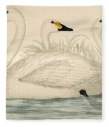 Swans Fleece Blanket