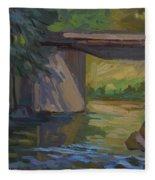 Swauk Creek Early Spring Fleece Blanket