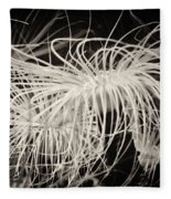 Swaying Anemone Bw Fleece Blanket