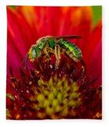 Sweat Bee Collecting Pollen Fleece Blanket
