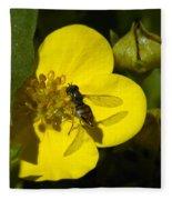 Sweat Bee Fleece Blanket