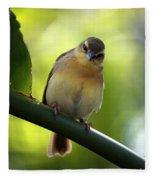 Sweet Bird On Branch Fleece Blanket