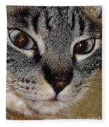Cat - Sweet - Boy Fleece Blanket
