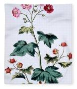 Sweet Canada Raspberry Fleece Blanket