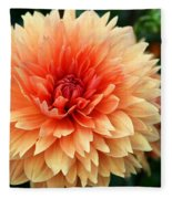 Sweet Dahlia Fleece Blanket