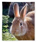 Sweet Little Bunny Fleece Blanket
