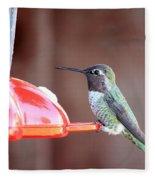 Sweet Little Hummingbird On Feeder Fleece Blanket