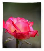 Sweet October Rose Fleece Blanket