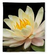 Sweet Peach Water Lily Fleece Blanket
