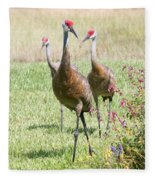 Sweet Sandhill Crane Family Fleece Blanket