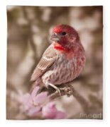 Sweet Songbird Fleece Blanket