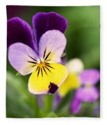 Sweet Violet Fleece Blanket