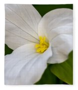 Sweet White Trillium 5 Fleece Blanket