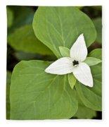 Sweet White Trillium Fleece Blanket