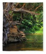 Swimming Hole Fleece Blanket