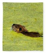 Swimming In Pea Soup - Baby Muskrat Fleece Blanket