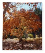 Sycamore Trees Fall Colors Fleece Blanket
