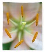Symmetrical Flower Closeup Fleece Blanket