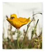Syrphid Fly And Poppy 2 Fleece Blanket
