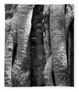 Ta Prohm Roots And Stone 04 Fleece Blanket