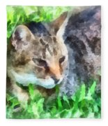 Tabby Cat Closeup Fleece Blanket