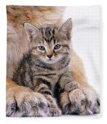 Tabby Kitten Between Large Dogs Paws Fleece Blanket