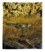 Tadpole Tail Fleece Blanket
