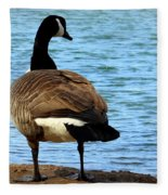 Take Me To The River Fleece Blanket