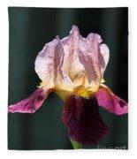 Tall Bearded Iris Named Indian Chief Fleece Blanket