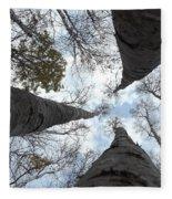 Tall Birches Fleece Blanket