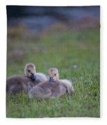 Cuddly Fury Babies Fleece Blanket