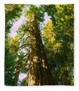 Tall Tall Trees Fleece Blanket