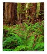 Tall Trees Grove Fleece Blanket