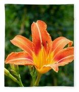 Tangerine Lily Fleece Blanket
