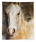 Taos Pony X Fleece Blanket