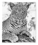Tarangire Leopard Fleece Blanket