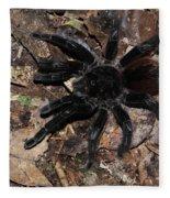 Tarantula Amazon Brazil Fleece Blanket