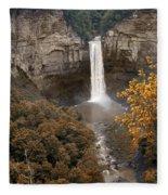 Taughannock Falls Park Fleece Blanket