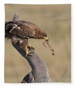 Tawny Eagle With Prey Fleece Blanket