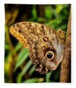 Tawny Owl Butterfly Fleece Blanket