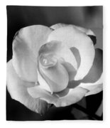 Tea Rose 01 - Infrared Fleece Blanket
