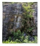 Tennessee Limestone Layer Deposits Fleece Blanket