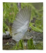 Tennessee Warbler Fleece Blanket