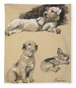 Terriers, 1930, Illustrations Fleece Blanket