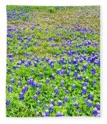Texas Beauties Fleece Blanket