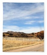 Texas Canyon In February Fleece Blanket