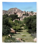 Texas Canyon Landscape Fleece Blanket